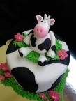 Fondant cow