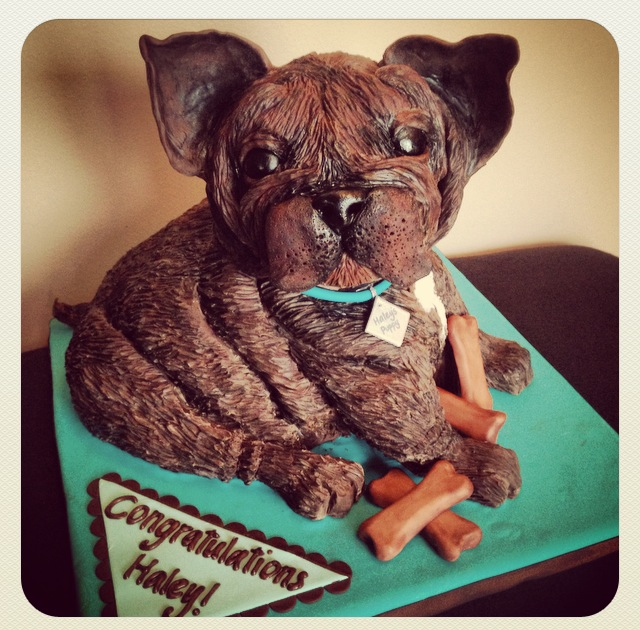 french bulldog dog puppy cake modeling chocolate